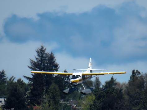Seattle Flying